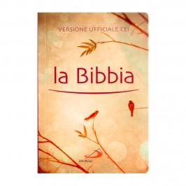 La Bibbia ed San Paolo