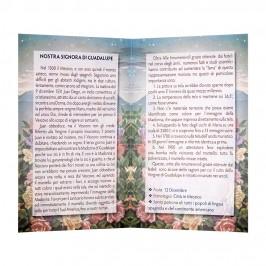 Statua Legno Madonna di Guadalupe con Biografia
