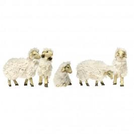 Gruppo 5 Pecore Assortite con Lana