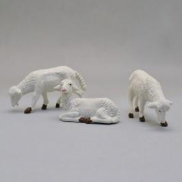Gruppo 3 Pecore