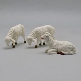 Set 3 Pecore