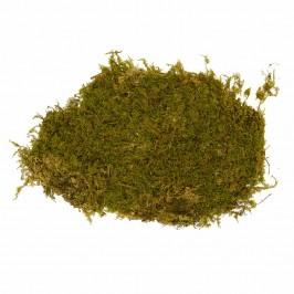 Muschio Naturale 350 gr